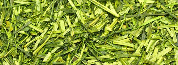 茶舗牧ノ原のお茶・日本茶・緑茶